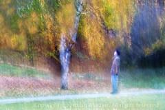 (Ísis Martins) Tags: november autumn man berlin colors cores herbst mann farbe homem novembro outono berlim passeio farben spaziergang mensch colorido sentimentos autumnfeeling herbstgefühle
