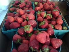 fresh berries!