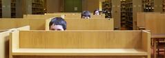 Hamilton Desk Peepers