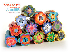 Polymer Clay Flower Canes (Iris Mishly) Tags: ceramica art cane arcoiris pen israel beads hand handmade jewelry polymerclay fimo clay canes handcrafted pens decor classes polymer millefiori embelishment arcila ceramicaplastica irismishly   polimerica arcillapolymerica