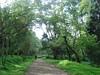 godawari park (jk10976) Tags: park nepal tree garden kathmandu godawari flickrsbest anawesomeshot ultimateshot diamondclassphotographer flickrdiamond jk10976 greenasia jkjk976