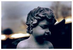(Pablo Montt) Tags: sky cemetery angel clouds atardecer heaven cementerio canonrebelxt cementeriotemuco pablomontt