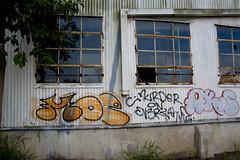 Graffiti (prdz3) Tags: building geotagged graffiti texas harlingen southtexas riograndevalley rgv 956 78550 geo:tool=gmif geo:lat=26197418 geo:lon=97699485