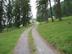 Weg zum Bargung (tronegg) Tags: wandern graubünden stierva