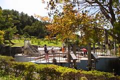 hanabatake park (kotechin) Tags: park lake yamanaka hanabatake
