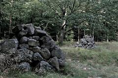 Bornholmske sten (anders_k_a) Tags: stone sten bornholm