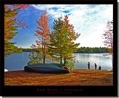 beautiful ontario (milleluce.com) Tags: bon autumn trees red lake ontario canada fall nature yellow forest outdoors echo canoes giang joeperry superaplus goldenphotographer flickrdiamond giangle giangleorg