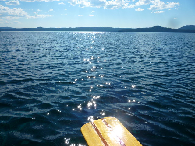 my paddle