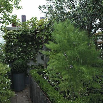 сад на крыше с видом на париж 3