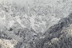 The surface of Mount Shakujo (Teruhide Tomori) Tags: travel mountain snow alps nature japan landscape foggy gifu hida  naturescene  japanalps  okuhida   kitaalps