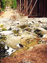 creekbed vintage