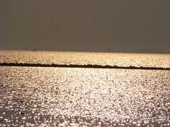 Enkhuizen 365 (tatyveli) Tags: en enkhuizen ijsselmeer