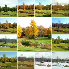 Seasons 2 (Stanley Zimny (Thank You for 14 Million views)) Tags: park autumn trees winter summer lake snow tree green fall yellow collage newjersey spring pond seasons mosaic nj ringwood