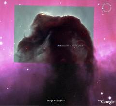 Orion - Nébuleuse de la Tête de Cheval - 3