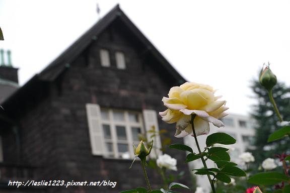 42P1120789_nEO_IMG.jpg