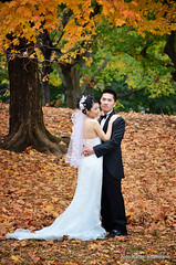Wedding (Rafakoy) Tags: city autumn wedding people orange ny newyork color colour tree green fall colors leaves yellow digital season groom bride leaf colours dress image centralpark images sample circularpolarizer afsnikkor18105mmvr nikond7000