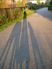morning shadows (sharwest) Tags: morning dogs me sunrise shadows walk sydney sharon trail southside camille sharwest shadowhund