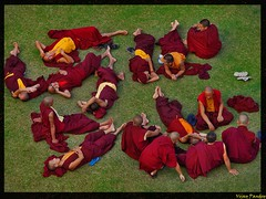 A Monk's Life (VIjay Pandey) Tags: blue vijay orange india green yellow superb robe prayer monk buddhism tibet lama tibetan teaching lhasa mussoorie dalailama dharamshala pandey dehradun monastry mcleodganj vijaypandey