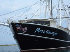 Patriotic Shrimper