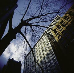 untitled (jodes i am) Tags: street city blue sky tree home me clouds buildings is holga spring australia melbourne queen take coming