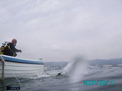 lets go (divingoff) Tags: sea man black golden boat diving bulgaria sands 2007 varna