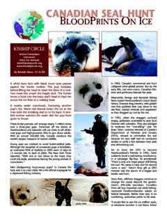 Kinship Circle - Factsheet - Canadian Seal Hunt