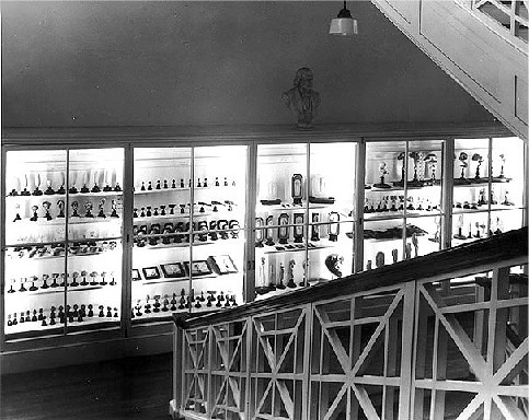Display of embryology specimens on the 1st floor landing in New England Building.