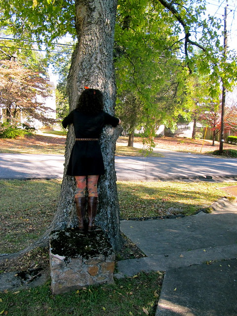 hug a tree on sunday