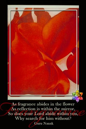 Flower POWER v2.0