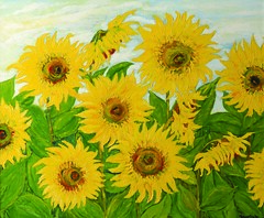 Sunflowers (Il colorista) Tags: flowers summer yellow estate giallo sunflowers fiori vangogh girasoli sunflowerseeds semidigirasoli