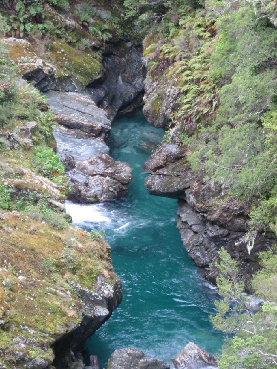 Riviere NZ 10