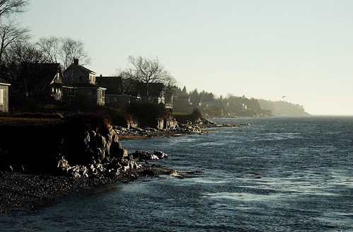 Shores edge, Harpswell Sound, Bailey's Island, Maine