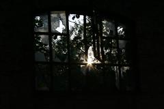 sun (wortel.) Tags: window industrial antwerp zon scherven venster petroleumzuid