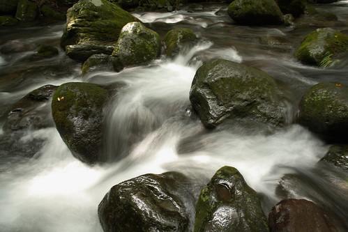 乙女の滝下流
