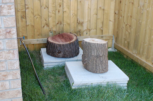 Walnut and Maple Logs