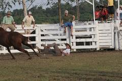 GINETEADA (Bruno Tetto) Tags: horse do cavalos festa jinete prendas rodeio saltos desgarrados peoes crioulo jineteada gineteada criolo tradicoes pontaldoparana rodeiodepontalctg pagoctg centrodetradicoesgauchas