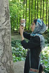 Intelligent Eyes (Hamed Saber) Tags: tree persian sara photographer meetup iran persia saber gathering iranian  hamed farsi   flickrgathering          upcoming:event=214803 flickr:user=sara