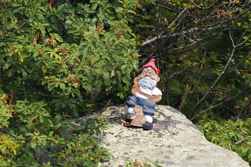 rock gnome closeup