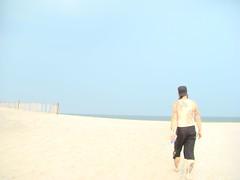 DSC01048 (Holly Baranowski) Tags: beach maryland assateagueisland