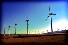 Quatro municípios da Bahia vão ter energia produzida pelos ventos