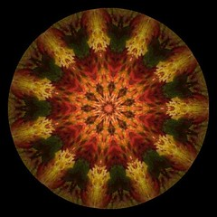 Fall Leaves (Sphere) Kaleidoscope