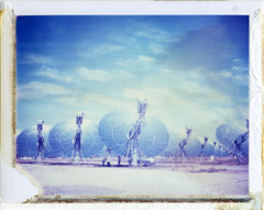 Phoenix, AZ (moominsean) Tags: arizona plant phoenix polaroid solar dishes 190 spaceage aquafria iduv expired122007
