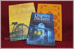 Desafio Literário 2011 - Novembro