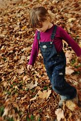 lie (maxivida) Tags: park november autumn girl leaves daughter una belgrade maxivida beograd tamajdan ta wwwmaxividade