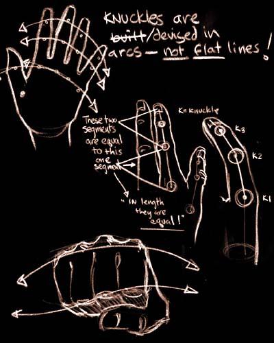 boceto mano humana