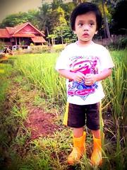 Desa Jatimekar, Cipeundeuy (enda_001) Tags: indonesia bandung picnik gaga sawah