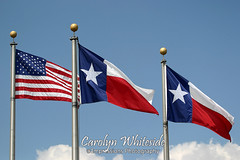 USA_TX Flags