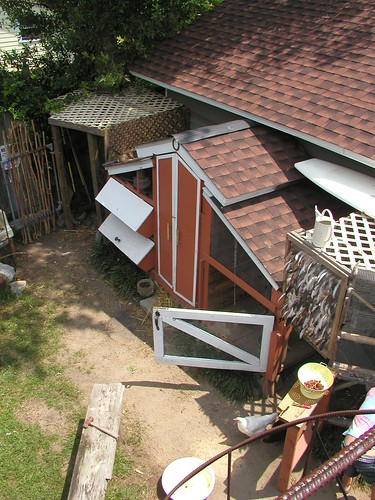 Above view of the coop