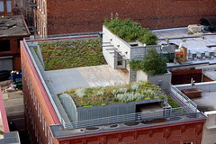 North and south waves of the green roof (drewsaunders) Tags: work vanity 2007 greenroof landscapearchitecture asla allisvanity americansocietyoflandscapearchitects featuredon