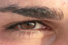 ...eye... (mauronster) Tags: sardegna italy macro eye canon wow italia sigma 70300mm riflessi occhio sigmalenses canon400d mauronster